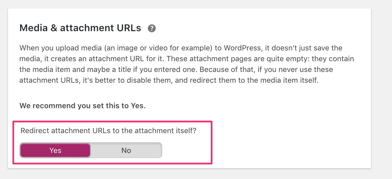 duplicate content checker WordPress plugin