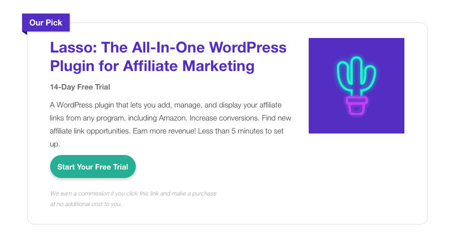 lasso wordpress plugin affiliate display box