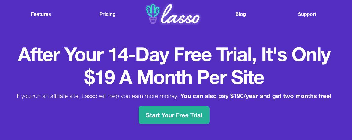 lasso wordpress plugin - pricing